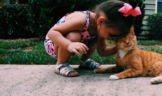 Τα Ψυχολογικά Οφέλη Από Την Συνύπαρξη Μας Με Τα Κατοικίδια Ζώα
